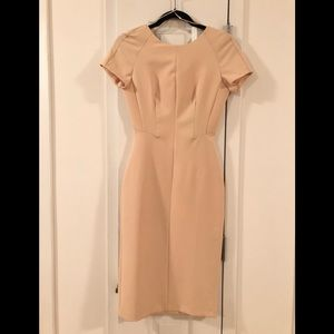 Soft Shell Pink Zara form-fitting midi dress